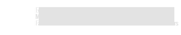 Parceiro Eduardo Emílio de Carvalho - vídeos - Marco Bavini - Estúdio Bavini - Fábio Ribeiro e Alexandre de Souza - Estúdio Brainless Brothers
